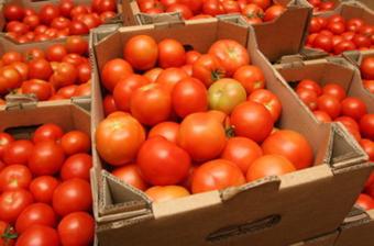 Экспортные поставки собранного урожая.