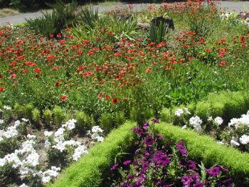 В Ботаническом саду Армении.