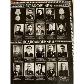 Полковники и подполковники