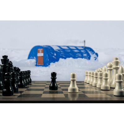 В шахматах агрессия практически исключена, но...