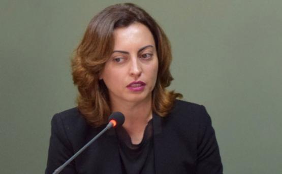 Лена Назарян: В связи с ситуацией в армии приняты четкие решения